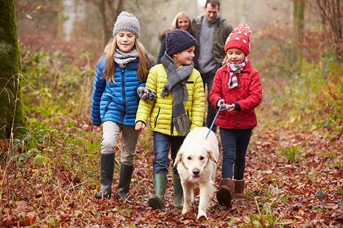 Family Walking Dog in the Countryside