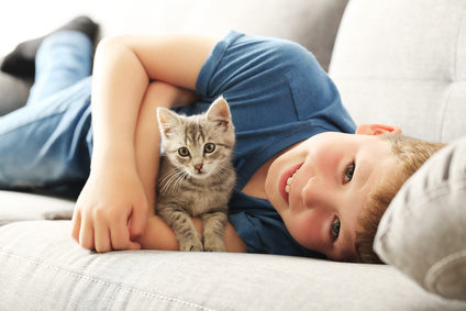 cat 4 Low Maintenance But Fun Pets For Kids